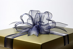 Holiday Gift-Giving Ideas