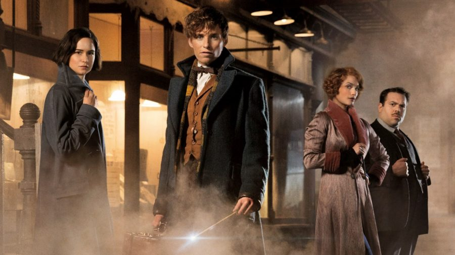 Potter World Continues Expansion With Fantastic Beasts